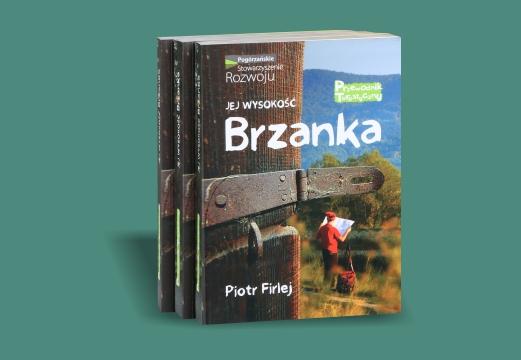 Przewodnik: Jej wysokość Brzanka – Piotr Firlej